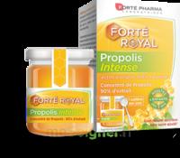 Forte Pharma Propolis Intense Gelée Pot/40g à La-Valette-du-Var