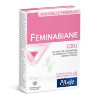 Pileje Feminabiane Cbu 30 Comprimés Bicouches à La-Valette-du-Var