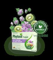 Phytoxil Transit Comprimés B/20 à La-Valette-du-Var