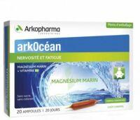Arkocean Magnesium Marin Solution Buvable Caramel 20 Ampoules/10ml à La-Valette-du-Var