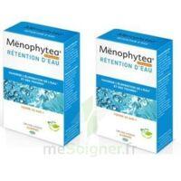 Menophytea Silhouette Rétention D'eau à La-Valette-du-Var