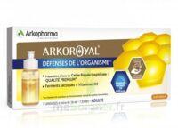 Arkoroyal Défenses Naturelles Gelée Adulte 7 Doses/10ml à La-Valette-du-Var