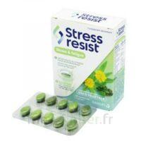 Stress Resist Comprimés Stress & Fatigue B/30 à La-Valette-du-Var