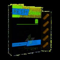Synactifs Respigreen Bio Gélules B/10 à La-Valette-du-Var