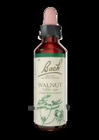 Fleurs De Bach® Original Walnut - 20 Ml à La-Valette-du-Var