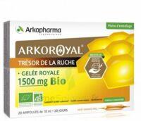 Arkoroyal Gelée Royale Bio 1500 Mg Solution Buvable 20 Ampoules/10ml à La-Valette-du-Var