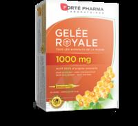 Forte Pharma Gelée Royale 1000 Mg Solution Buvable 20 Ampoules/10ml à La-Valette-du-Var