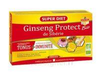 Superdiet Ginseng Gelée Royale Protect Bio Solution Buvable 20 Ampoules/15ml à La-Valette-du-Var