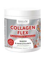 Biocyte - Collagen Flex B/30 à La-Valette-du-Var