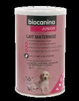 Biocanina Lait Poudre Maternisé B/400g à La-Valette-du-Var