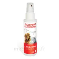 Clément Thékan Caniderma Solution Externe Cicatrisant Spray/125ml à La-Valette-du-Var