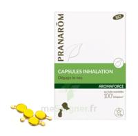 Aromaforce Caps Inhalation Bio B/15 à La-Valette-du-Var