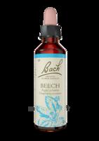 Fleurs De Bach® Original Beech - 20 Ml à La-Valette-du-Var
