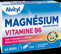 Govital Magnésium Vitamine B6 Comprimés B/45 à La-Valette-du-Var