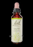 Fleurs De Bach® Original Olive - 20 Ml à La-Valette-du-Var