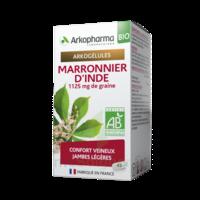 Arkogélules Marronnier D'inde Bio Gélules Fl/45 à La-Valette-du-Var