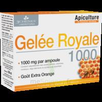 3 Chenes Phytotherapie Familiale Solution Buvable Gelée Royale 1000 10 Ampoules/10ml à La-Valette-du-Var